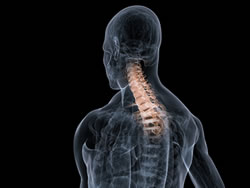 Neck Pain Treatment in Fleming Island